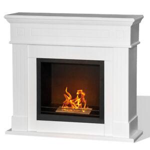 Divina-Fire-Camino-biocamino-a-bioetanolo-legno-bruciatore-inox-1-5l-CAMBRIDGE-B
