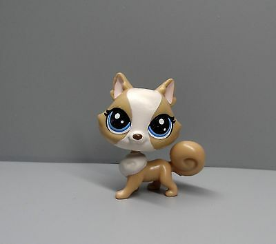 Littlest Pet Shop LPS DOG Collection Child Boy Girl  Figure ~D531