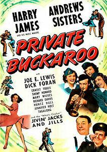 PRIVATE-BUCKAROO-PRIVATE-BUCKAROO-DVD-NEW