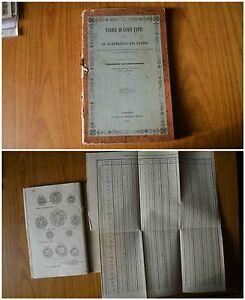 Antiguo Libro Tablas De Conti Hechos Ragguaglio De Precios Camandona Torino 1849