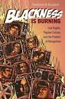 Blackness is Burning: Civil Rights, Popular Culture, and the Problem of Recognition by TreaAndrea M. Russworm (Paperback, 2016)