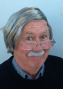 grey baldy comb over and grey moustache fancy dress wig grandad