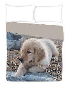 Trapuntino Singolo Copriletto Cotton House Flash Labrador