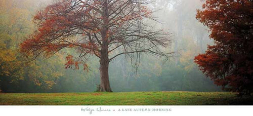 A Late Autumn Morning by Katya Horner Art Print Landscape Photo Poster 48x22