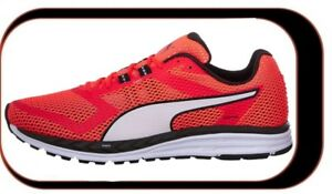 Running Homme Ignite Speed rouge Puma Course De Chaussures 500 BxfRR