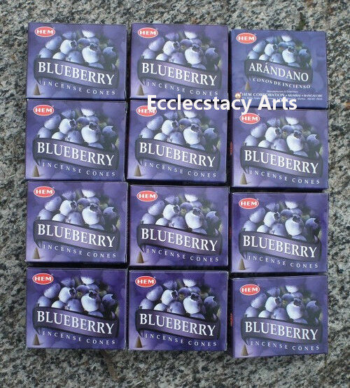 Hem Blueberry Incense 12 x 10 Cone, 120 Cones Fruity Fragrance Scent NEW {:-)