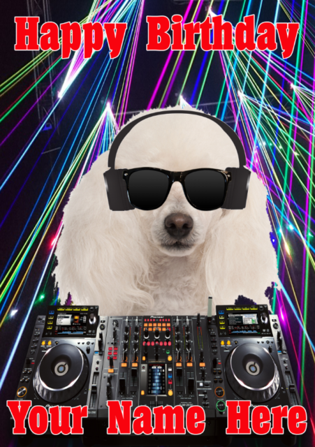 Poodle Dog j539 Clubbing Cool DJ Fun Cute Personalised Birthday card
