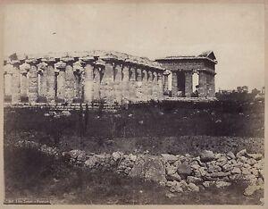 Italia Paestum Temples Greco Grecia Foto Vintage Albumina Ca 1870