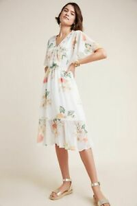 AS-IS-MISSING-LINING-NWT-Sz-XS-Anthropologie-Farm-Rio-Eloisa-Floral-Dress-228