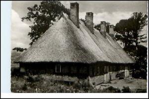 AK-Schleswig-Holstein-Holsteinisches-Bauernhaus-um-1955-Postkarte-Postcard