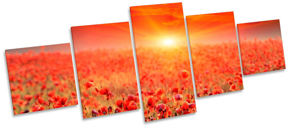 Sunset Poppy Field Landscape MULTI CANVAS WALL ART Box Frame Picture