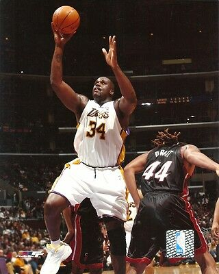innovative design 7f949 8a5a8 SHAQUILLE O'NEAL 8x10 NBA ACTION PHOTO Photofile Picture LOS ANGELES LAKERS  shaq | eBay