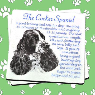 Dog Drinks Coaster Beer Springer Spaniel- Wooden