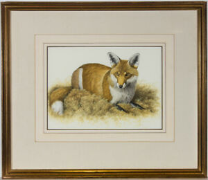 Simon Turvey SWLA (b.1957) - Signed 20th Century Gouache, The Fox