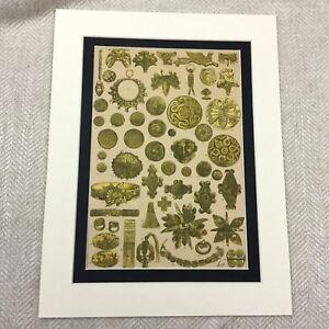 Antique Print Ancient Greek Gold Jewelry  Mycenaean Greece Colour Lithograph