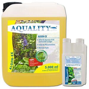 6 00 l aquality algenex 5000 ml gegen algen im aquarium algenvernichter. Black Bedroom Furniture Sets. Home Design Ideas