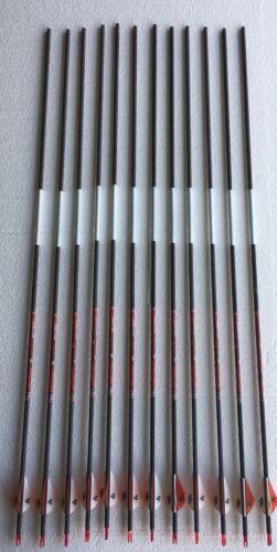 "Bloodsport Impact Hunter 350 Arrows w//Vanes  Outserts 12 Arrows 2-6 Packs 31"""
