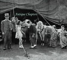 Chapman's Circus 1936 Photo Article A919