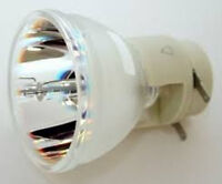 One Year Warranty Optoma Bl-fp230d Replacement Bulb Lamp - Lowest Price On Ebay