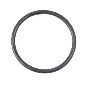 Fuel Pump Assembly//Fuel Level Sending Unit O-Ring