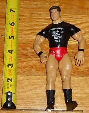 2003 WWF WWE Jakks Randy Orton Evolution loose Wrestling Figure Apex Predatorw
