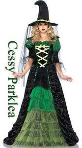 Adult-Magical-Goth-Green-Witch-Costume-Halloween-Outfit