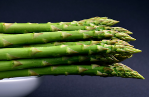 100//250 Graines Asperge Verte MARY WASHINGTON Tendre Potager Légumes Plantes