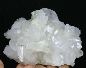 1.63lb Natural Clear Quartz Cluster Crystal Wand Point Healing Mineral Specimen