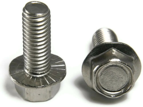 """Stainless Steel Hex Cap Serrated Flange Bolt FT UNC 1//4/""""-20 x 1//2/"""" Qty 25"""
