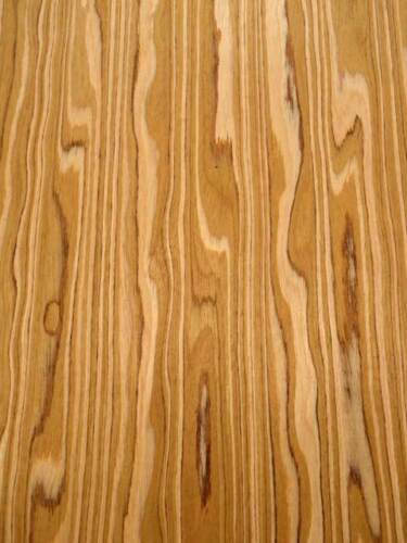 Oliven Furnier SaRaiFo Olivenholz Olive wood 250x32cm