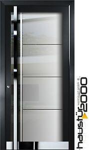 haust r2000 aluminium haust r glas t r haust ren nach ma mod ht 5410 gla ebay. Black Bedroom Furniture Sets. Home Design Ideas