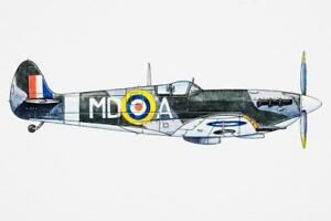 Royal-Air-Force-RAF-Supermarine-Spitfire-WWII-Art-Print-Poster-24x36-inch