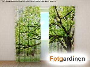 Vorhang Fotodruck fotogardinen ein baum vorhang 3d fotodruck foto vorhang