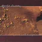 Paint and Turpentine by Angie Nussey (CD, Nov-2004, Dragonfly Distribution)