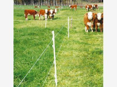 Finca/Rancho en Venta en Bordo de Carretera para crianza de animales