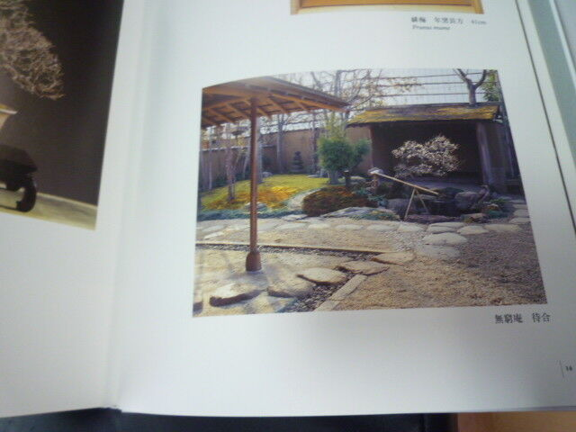 Bonsai art used Book  ten ten ten Kobayashi Kunio world 3e8975