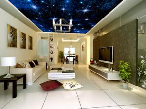 3D Starlight Nacht 85 Fototapeten Wandbild Fototapete BildTapete Familie DE Kyra