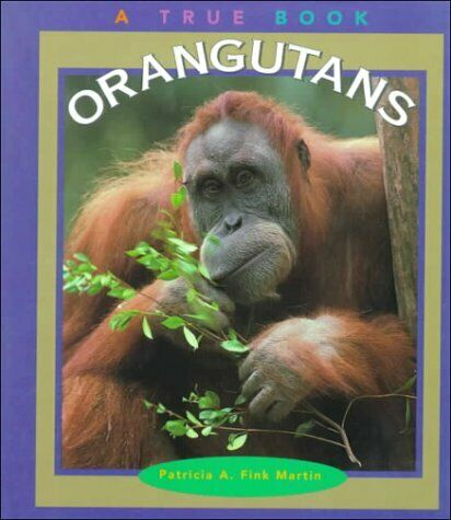 Orangutans  True Books  Animals