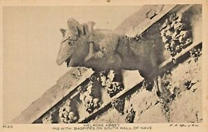 MELROSE-ABBEY-ROXBURGHSHIRE-SCOTLAND-PIG-WITH-BAGPIPES-SOUTH-WALL-PHOTO-POSTCARD