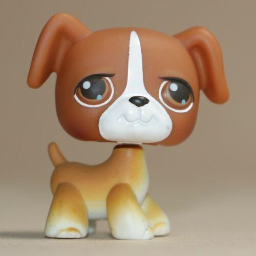 LPS Littlest Pet Shop #25 Boxer Chien-Marron