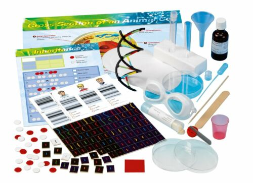Thames and Kosmos 665002 Biology Genetics and DNA Experiment Kit