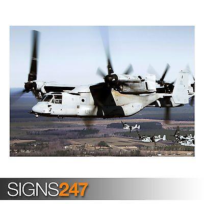 Amichevole Birds Of A Feather (ac333) Dell'esercito Poster-foto Immagine Stampa Poster Art A0 A A4-