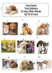 30 real kitten puppy cat dog personalized address labels ebay