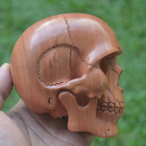 Human skull carving mm height s in saba wood hand carved ebay