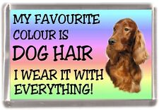 "Irish Red Setter Fridge Magnet ""My Favourite Colour is Dog Hair"" by Starprint"
