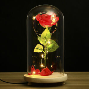 Beauty And The Beast Rose Glass Lamp Dome Valentine Led Red Rose