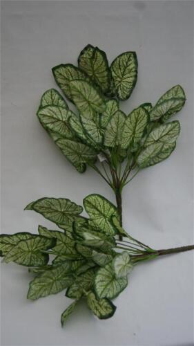 "crème feuillage plante Bush 28 feuilles memorial home 20 /""artificielles Caladium vert"