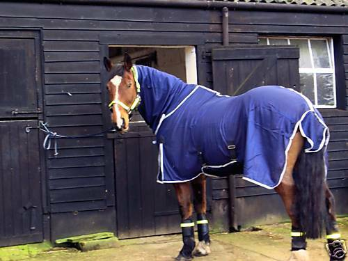 GEE TAC HORSE FLY MASK SHEET NO JOINCOMBO UV RUGS 6ft