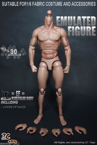 1//6 Model Toy Muscle Muscular Male Doll 12/'/' Action Figure Fit Hot Toys Head
