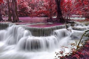 Red-Trees-Waterfall-Pink-Stream-Forest-Landscape-Art-Poster-Canvas-Pictures